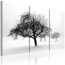 Kép  Trees submerged in white